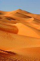 A Dune Field in the Desert  Rub al-Khali Empty Quarter, Middle East