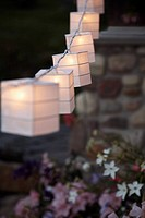 Paper lanterns illuminated