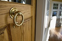 Front door knocker (thumbnail)