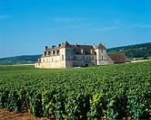 Clos de Vougeot, Vougeot, Côte d´Or, Burgundy, France