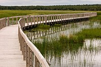 Boardwalk over Bowley Pond. Prince Edward Island National Park (Greenwich), Canada