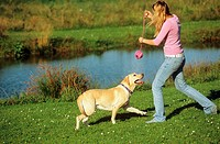 young woman playing with Labrador Retriever