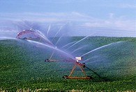 Agriculture - A center pivot irrigation system irrigating a rolling hillside field of young soybeans / Iowa, USA