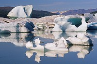 Lowell Lake, Icebergs, Kluane National Park, Yukon, Canada
