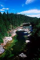 Nimpkish River, Vancouver Island, British Columbia, Canada