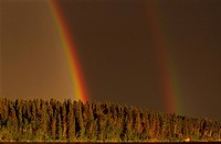 Double Rainbow above Forest