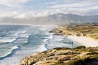 South Africa, Gansbaai, Walker Bay Nature ´Reserve
