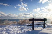 Bench in Winter, Scarborough, Ontario