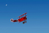 Fokker Triplane replica in Flight