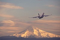 Airplane with mountain in background