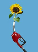 Gasoline nozzle with sunflower Digital Composite