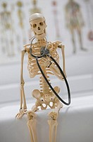 Skeleton with cigarette and stethoscope