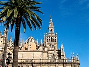 Cathedral. Sevilla. Spain