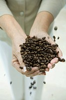 Woman's hands holding coffee beans, cropped