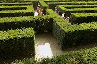Hedge Labyrinth, Schonbrunn Palace Gardens, Vienna, Austria, Europe