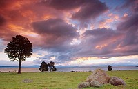 Sunset at Lake Taupo; Waikato; North Island; New Zealand