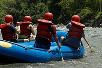 Rear view of four people rafting in a river
