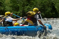 Four people rafting in a river