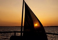 Silhouette of a sailboat in the sea at sunset, Pemba, Tanzania