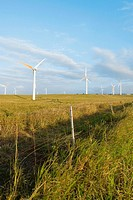 Wind turbines in a field, Pakini Nui Wind Project, South Point, Big Island, Hawaii Islands, USA