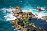 Rock formations in the sea, Hookipa Beach, Maui, Hawaii Islands, USA