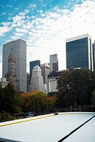 Trees in front of buildings, Central Park, Manhattan, New York City, New York State, USA