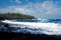 Group of people swimming in the sea, Kehena Beach, Big Island, Hawaii Islands, USA