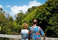 Rear view of a man and a woman looking at a view, Onemea Bay, Big Island, Hawaii Islands, USA