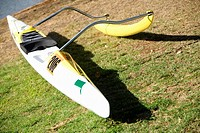 High angle view of a kayak in a park, Honolulu, Oahu, Hawaii Islands, USA