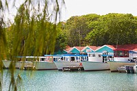 Boats moored at a dock, Coral Cay, Dixon Cove, Roatan, Bay Islands, Honduras