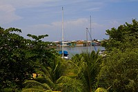 Boat docked at a harbor, French Harbour, Rotan, Bay Islands, Honduras