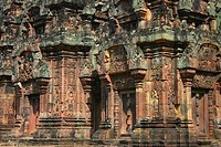 Close-up of a temple, Ta Prohm Temple, Angkor Wat, Siem Reap, Cambodia