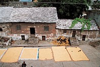 Sun_drying grain outside houses, Shitouzhai in Huangguoshu scenic area, Anshun City, Guizhou Province of People's Republic of China, FOR EDITORIAL USE...