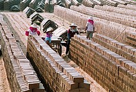 Women working in the brickyard of the Huian County, Fujian Province of People's Republic of China, FOR EDITORIAL USE ONLY
