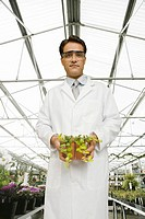Male scientist in plant greenhouse