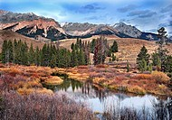 Wetland below Boulder Mt. Sun Valley, Idaho. USA