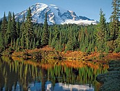 Mt. Rainier in autumn reflecting in Reflection Lake, Mt. Rainier  National Park, Washington State, USA
