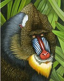Illustration of a mandrill