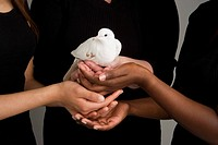 Women holding a dove