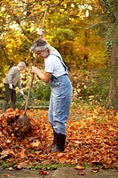 Garden, senior couple, gardening, numeracys, foliage, autumn, pension, people, 66 years, 60-70 years, seniors, two, pair, couple, age, well Age, grey-...