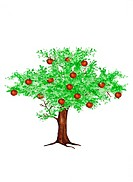 Apple tree, cut-out, illustration,