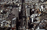 Aerial view of a cityscape, Tokyo, Japan