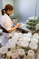 In-vitro culture chamber, Neiker Tecnalia, Instituto de Investigación y Desarrollo Agrario, Ganadero, Forestal y del Medio Natural, Arkaute, Alava, Eu...