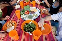 Multi-ethnic friends eating at picnic table