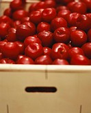 Red plums in a crate