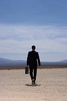 Businessman walking in dry lake bed, rear view