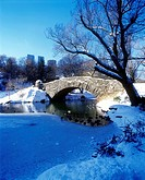 CAPSHAW BRIDGE POND. CENTRAL PARK. MANHATTAN NEW YORK. USA