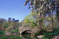 SPRING POND CENTRAL PARK MANHATTAN NEW YORK. USA