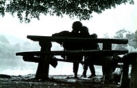 lovers sitting on a bench
