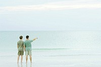 Father and son standing together at the beach, looking at view, one pointing